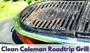 Clean Coleman Roadtrip Grill