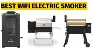 best wifi electric smoker